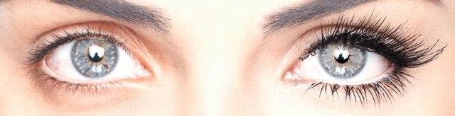 lisa lashes